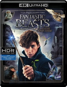 Harry Potter' at the movies: 'Fantastic Beasts and Where to
